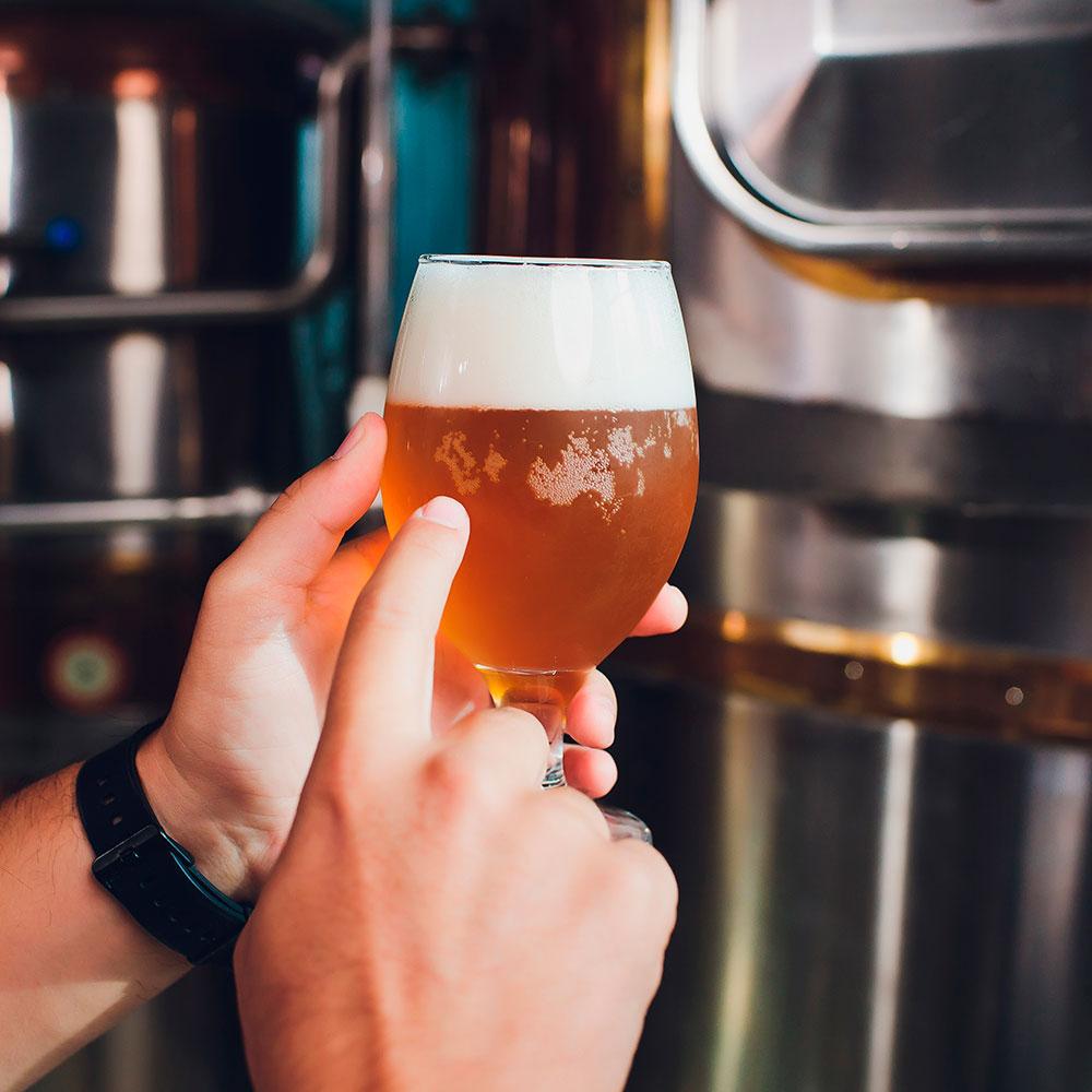 Algunos mitos sobre la cerveza ale y la cerveza lager